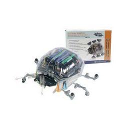 'Ladybug' Robot Kit