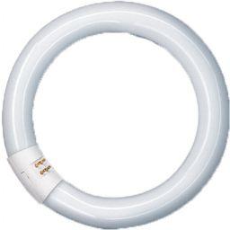Ringlamp NL-T9 22W/840 voet G10Q