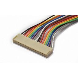 20-polige draadconnector - Vrouwelijk