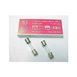 Zekering 5x20mm - snel - 250mA - 230V